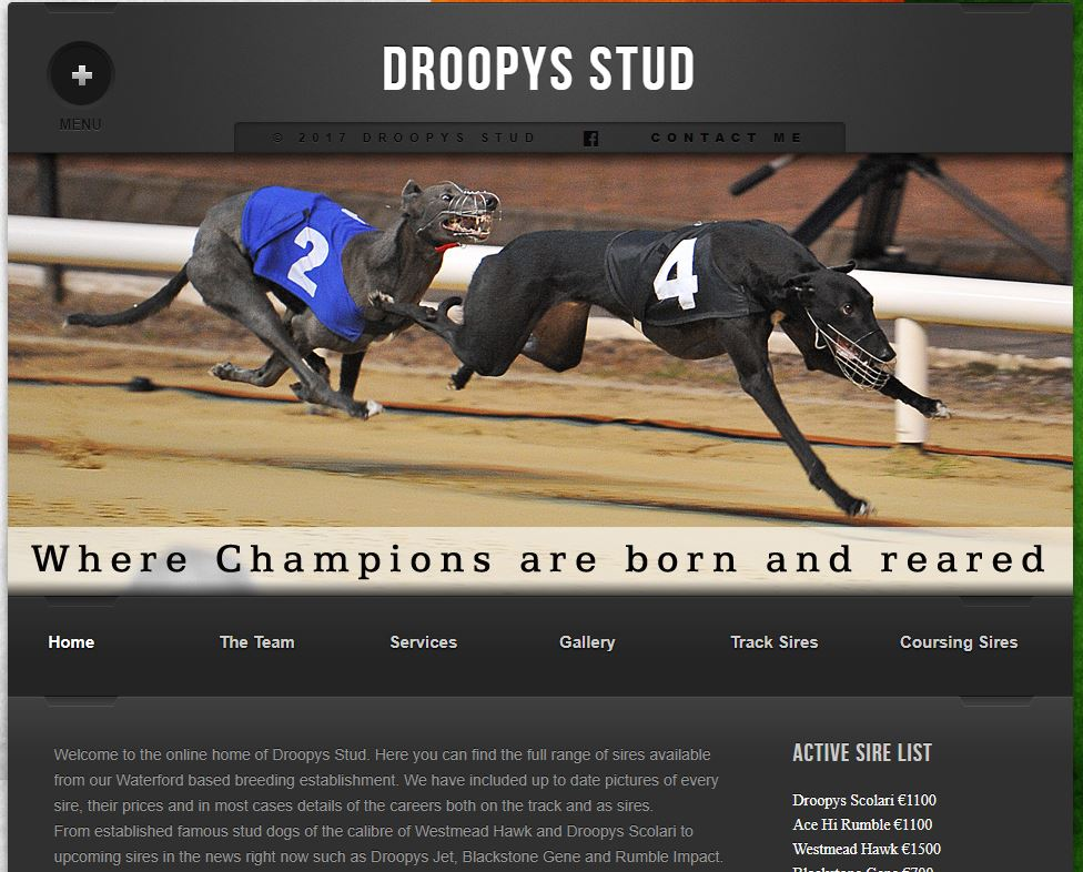 Droopys Stud Web Site