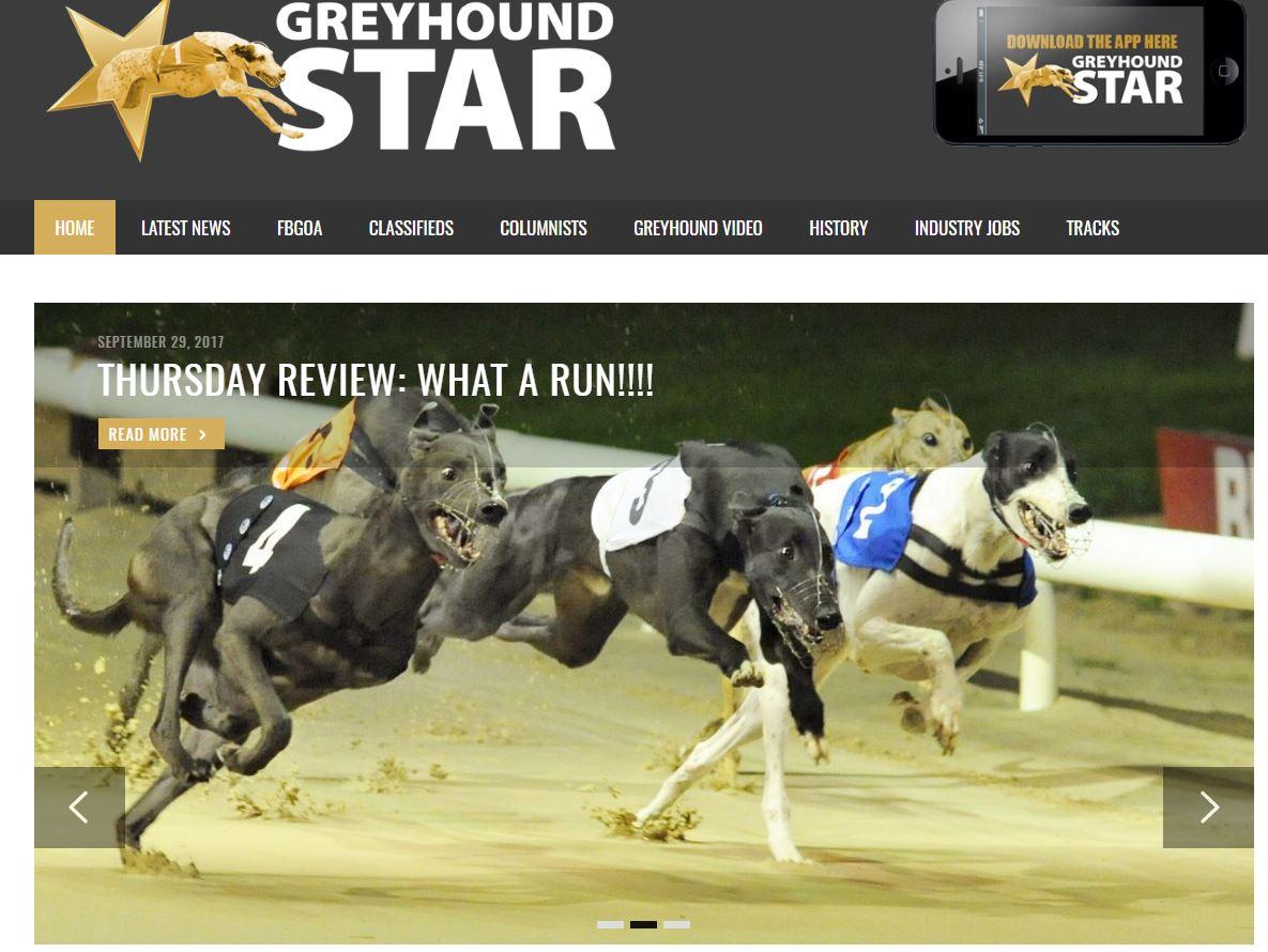 Greyhound Star Web Site