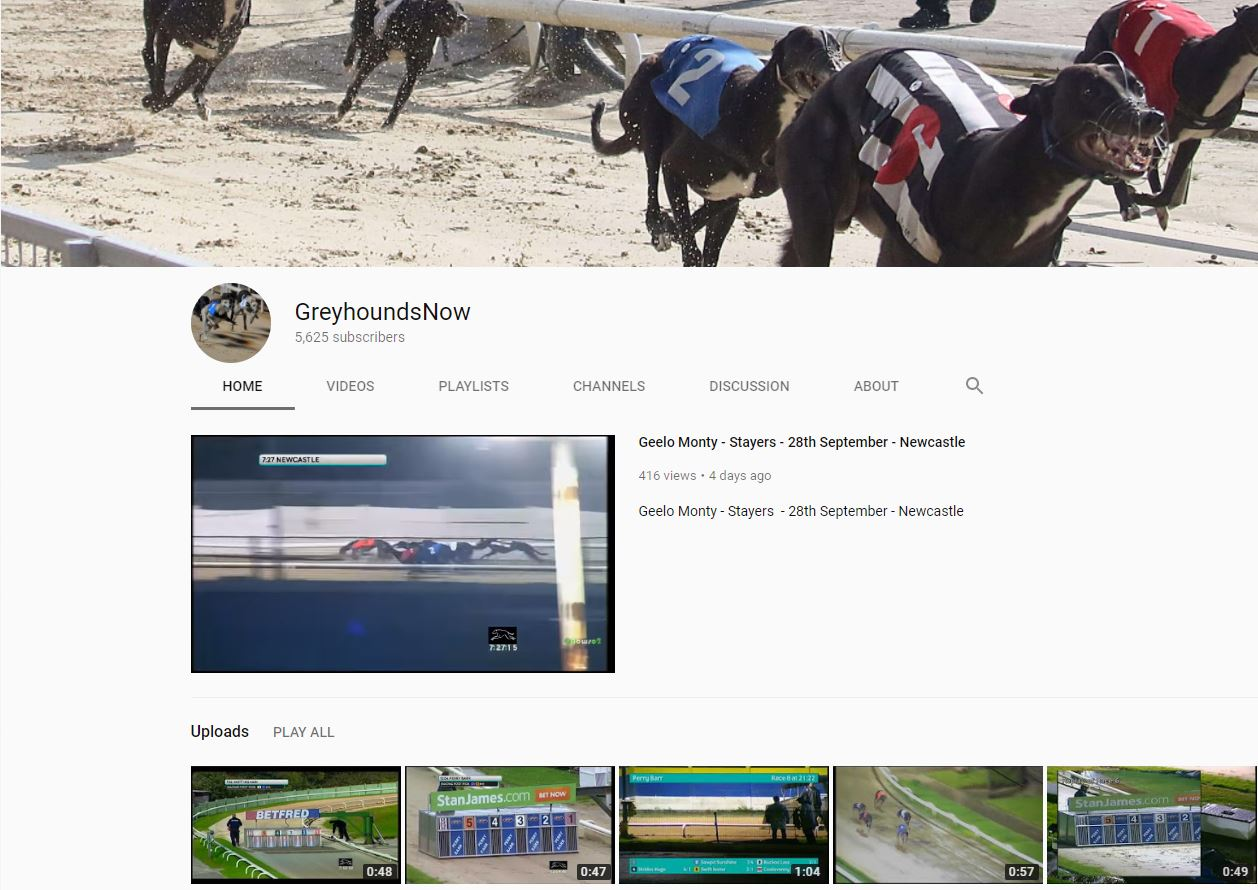 Greyhounds now web site
