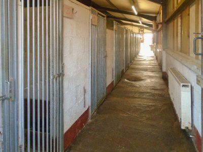 Greyhound Kennels