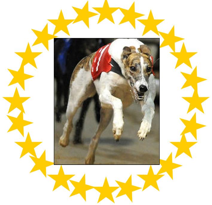 Greyhound_Minglers_Thunder-garland